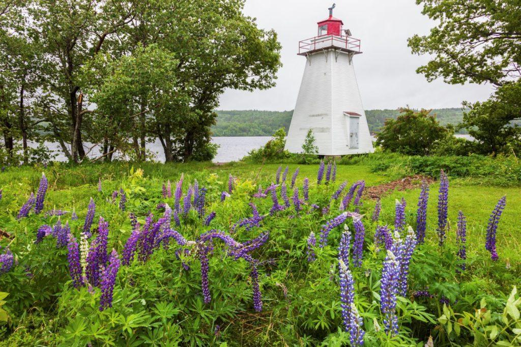Lighthouse, Saint John, New Brunswick. Rehab Saint John New Brunswick, Addiction Services Saint John New Brunswick, Drug and Alcohol Rehab Saint John New Brunswick.